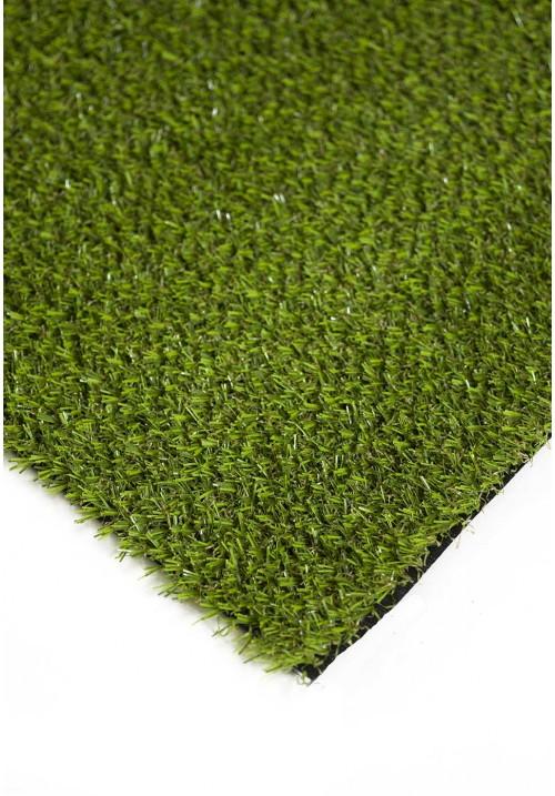 Grass 5611